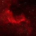 NGC 7000 -- ED APO 5Zoll, 39 Aufnahmen ISO 2000, 5DMKII mod.