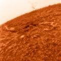 AR2681 17.32h MESZ n -- Invertierte Fassung Doku siehe hier: https://astronomie-teilen.de/sonne-ha-21-09-2017-ar2680-ar2681/ Zur Grossansicht Bild auf original Grösse umstellen.