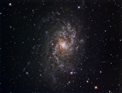 M33  - First Light